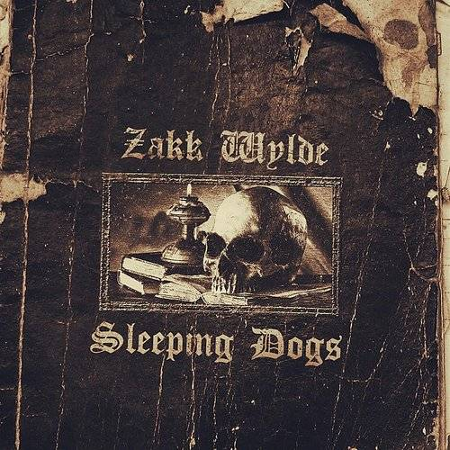 Sleeping Dogs - Single