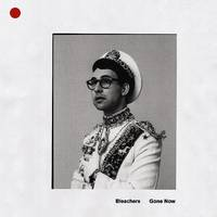 Bleachers - Everybody Lost Somebody - Single