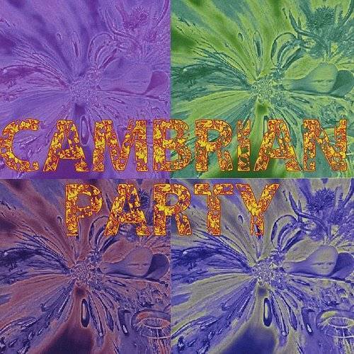 Cambrian Party