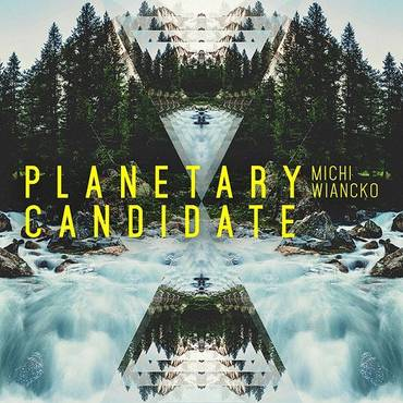Planetary Candidate