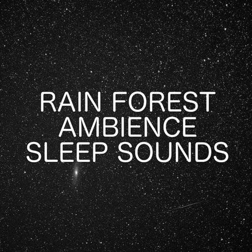 Terry Holder - Rain Forest Ambience Sleep Sounds - Sounds