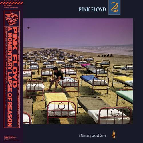 A Momentary Lapse Of Reason [Import]