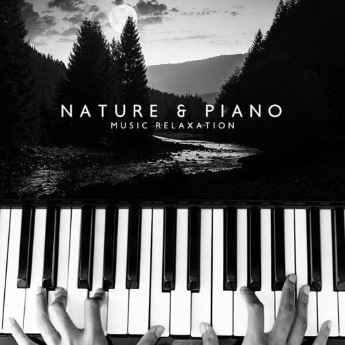 Relaxation And Meditation - Nature & Piano Music Relaxation