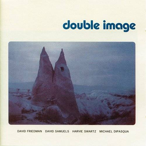 Double Image (Feat. David Samuels, Harvie Swartz, Michael Dipasqua)