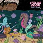 Hollie Cook - Vessel of Love [LP]