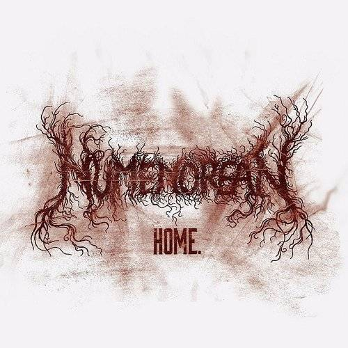 Home (Colv) (Grn) (Ltd)