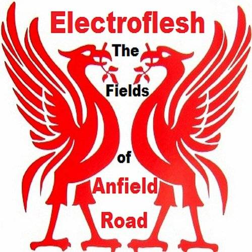 The Fields Of Anfield Road