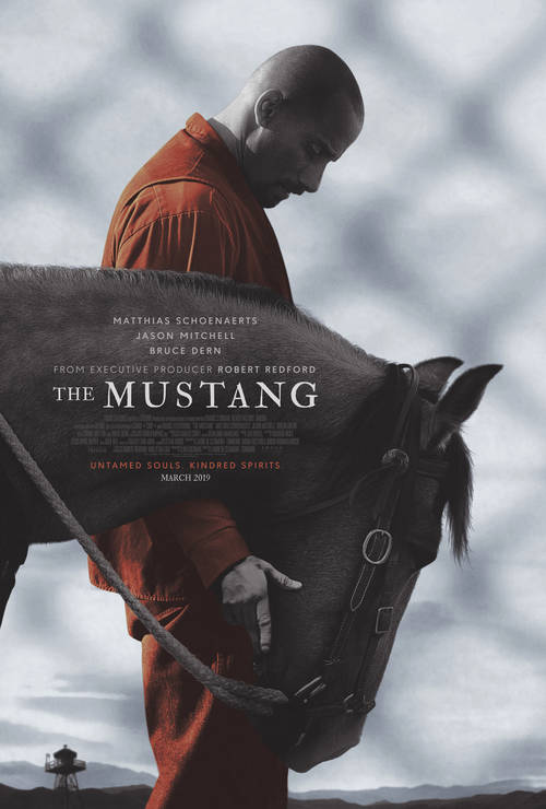 The Mustang [Movie]