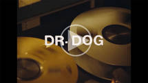 Dr. Dog - Critical Equation
