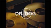 Dr. Dog - Critical Equation