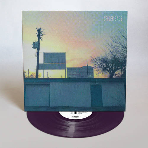 Someday Everything Will Be Fine [Indie Exclusive Limited Edition Peak Vinyl LP]