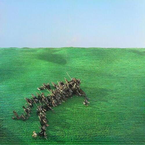 Squid - Bright Green Field [With Booklet]