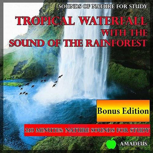 Amadeus - Sounds Of Nature For Study: Tropical Waterfall