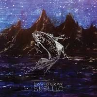 David Gray - Skellig [LP]