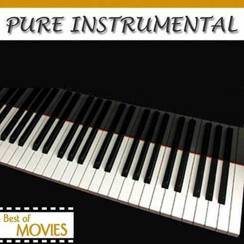 Pure Instrumental: Best Of The Movies