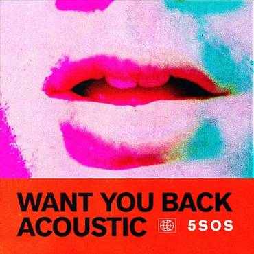 Want You Back (Acoustic) - Single