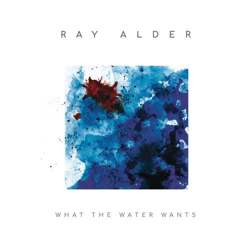 What The Water Wants [Import LP]