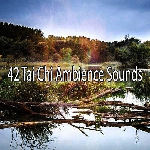 Yoga - 42 Tai Chi Ambience Sounds | Armadillo Music