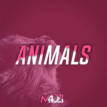 Animals - Single