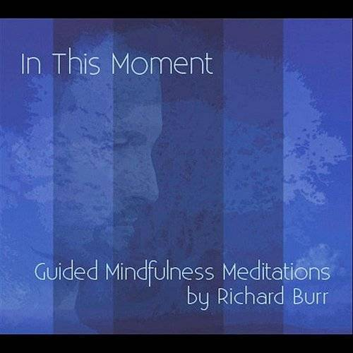 In This Moment: Guided Mindfulness Meditations