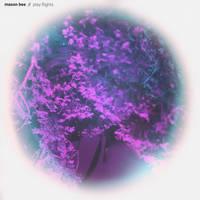 Mason Bee - Play Flights [Import LP]