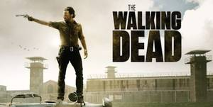 The Walking Dead [TV Series]