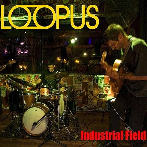Industrial Field