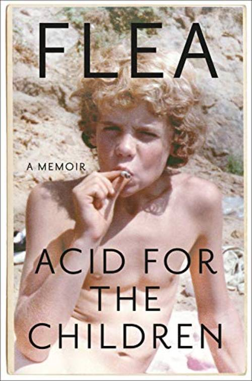 Acid for the Children: A Memoir [Book]