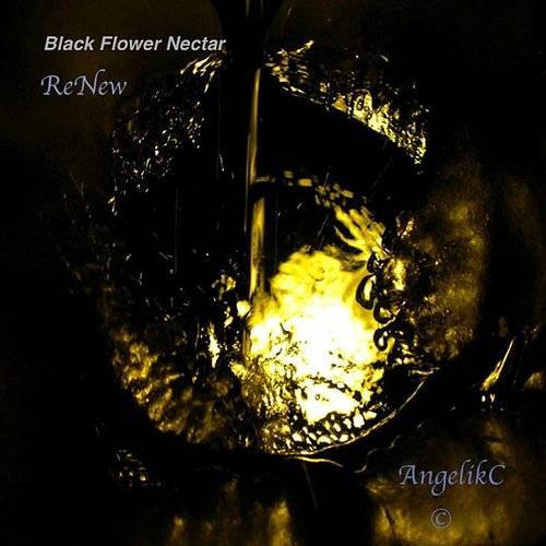 Black Flower Nectar Renew