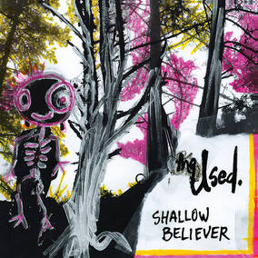 Shallow Believer