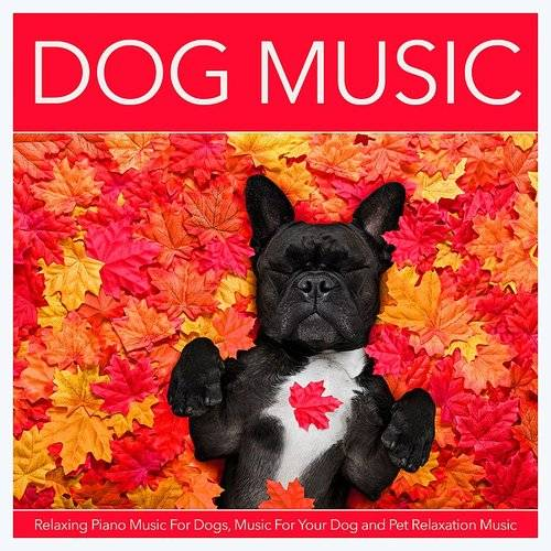 Dog Music - Dog Music: Relaxing Piano Music For Dogs, Music For Your