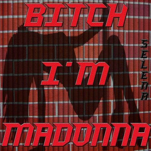 Bitch I'm Madonna (Remixed Sound Version)