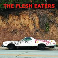 The Flesh Eaters - I Used To Be Pretty [2LP]