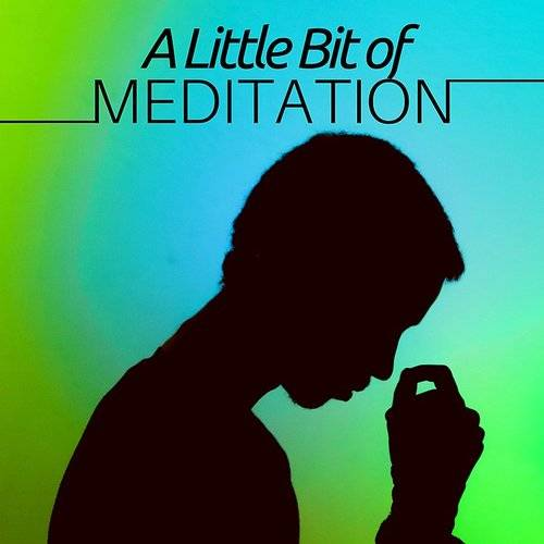 A Little Bit Of Meditation - 22 Songs For Relaxation