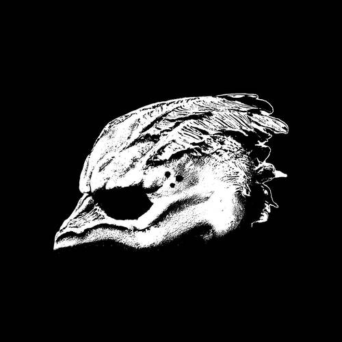Legend Of The Seagullmen [LP]