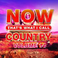 Now That's What I Call Music! - Now That's What I Call Country, Volume 14