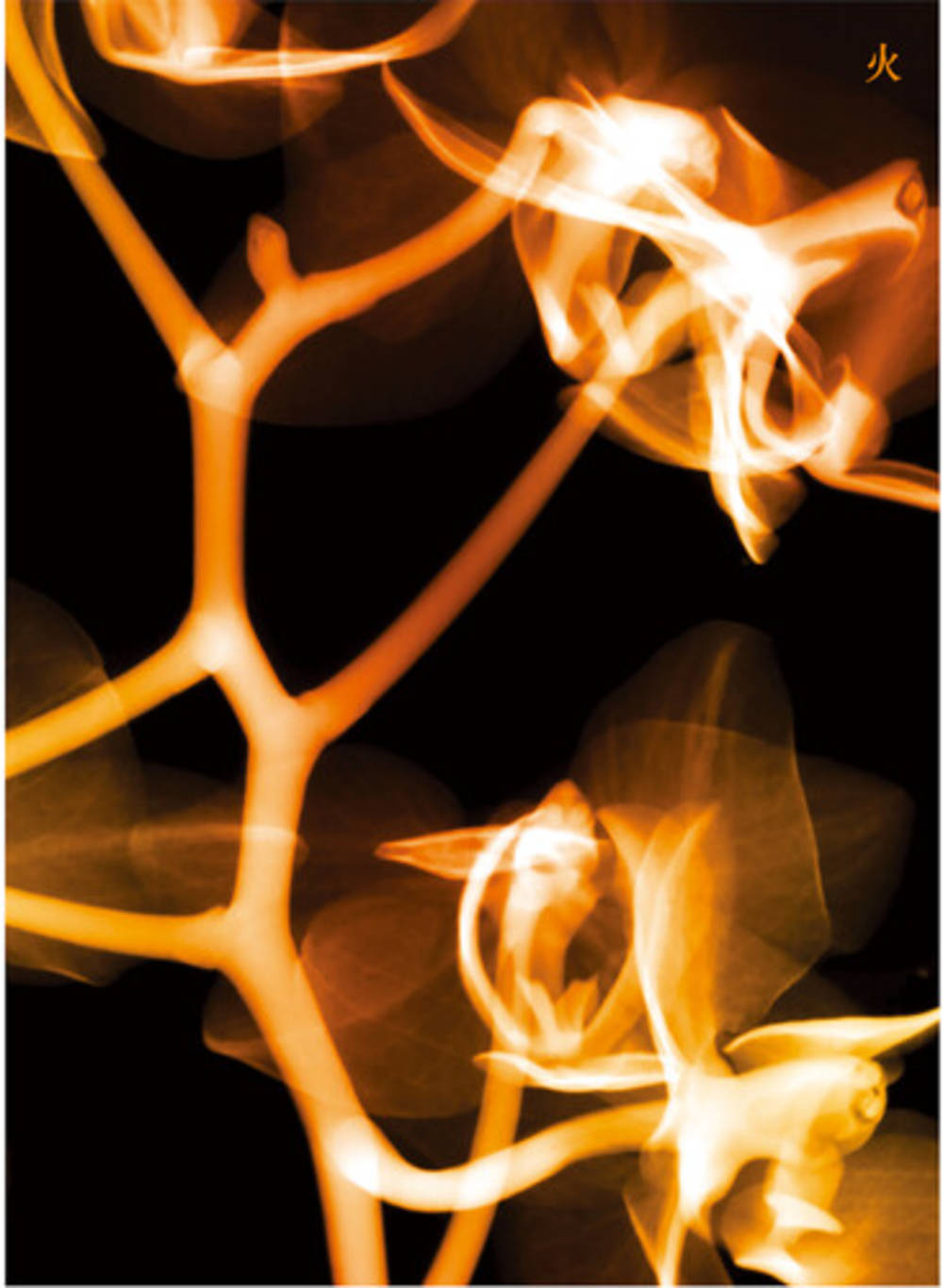 (G)I-DLE - I Burn (Fire Version)