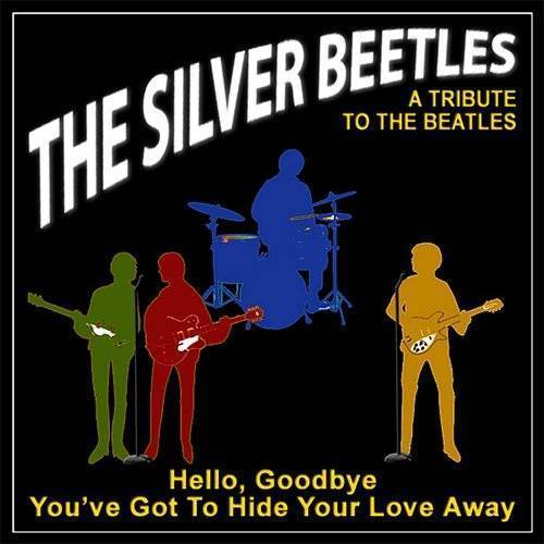 Hello, Goodbye / You've Got To Hide Your Love Away (A Tribute To The Beatles)