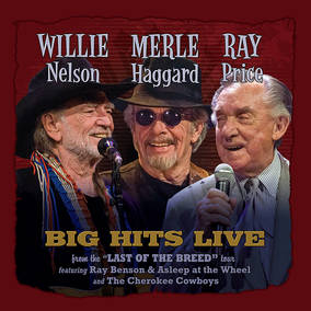Willie, Merle & Ray: Big Hits Live From The Last Of The Breed Tour