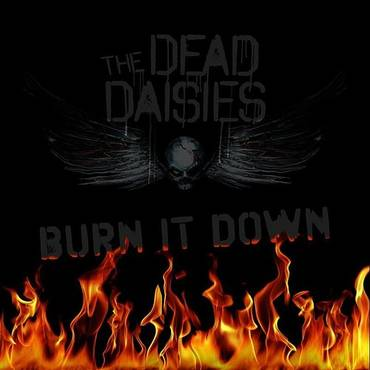 Burn It Down - Single