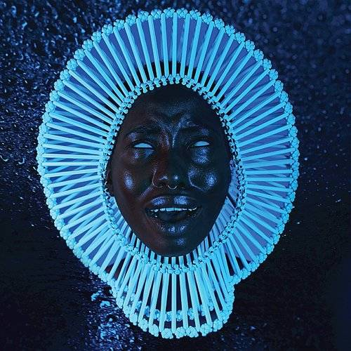 Awaken My Love [LP]