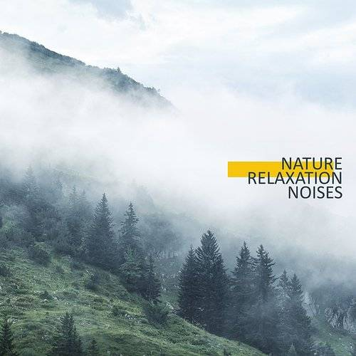Soothing Music Collection - Nature Relaxation Noises