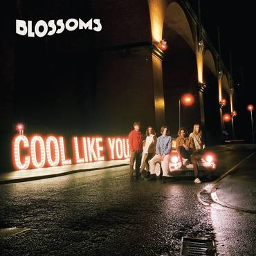 Cool Like You [Import Deluxe LP]