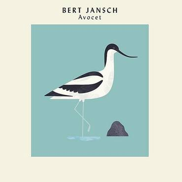 Avocet (Anniversary Edition) (Exp) (Spa)