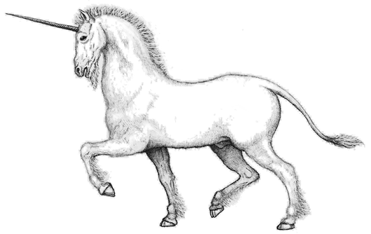 unicorn reworked.png
