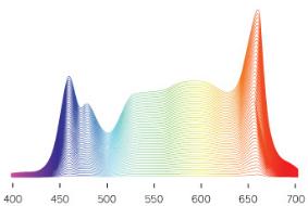 xr15FW-spectrum