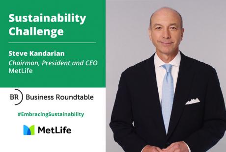 Steve Kandarian, MetLife Inc.