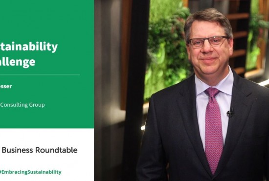 Boston Consulting Group Sustainability Challenge