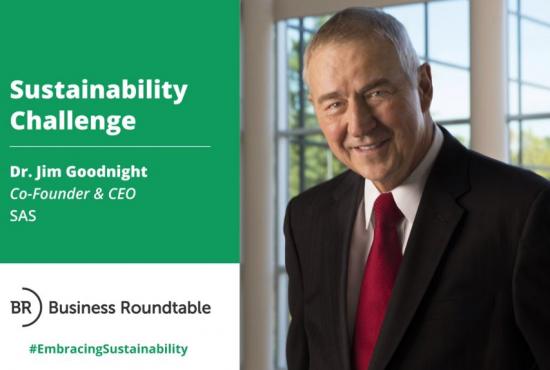 SAS Sustainability Challenge