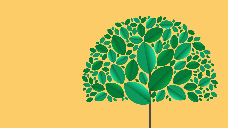 sustainability report embracing sustainability challenge